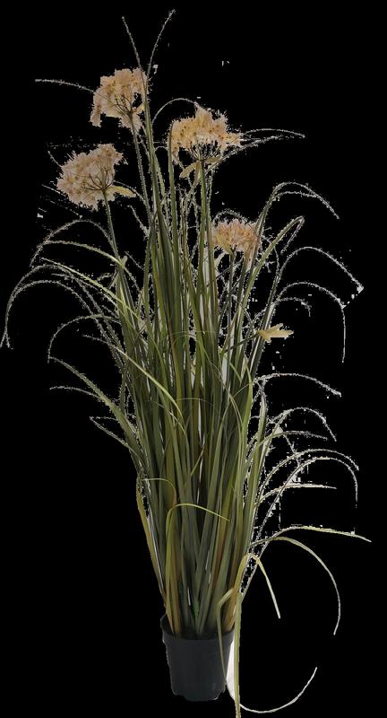 עציץ עלים פרח 130 ס