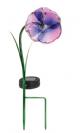 פרח אמנון ותמר סולארי