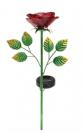 ורד סולארי על מוט