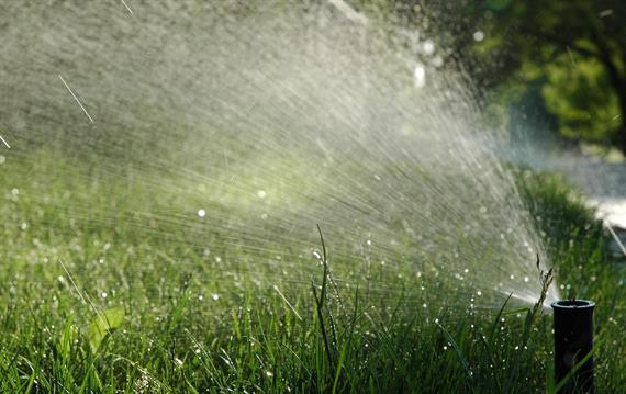 תכנון התקנת מערכות השקיה