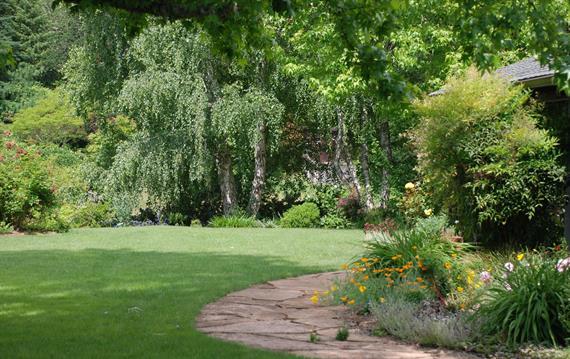 חשיבות הדישון הנכון של המדשאות