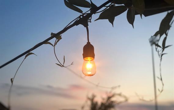 טיפים לשילוב תאורה לאדניות עץ בגינה