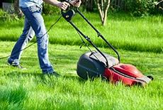 מכסחת דשא חשמלית ורובוטית